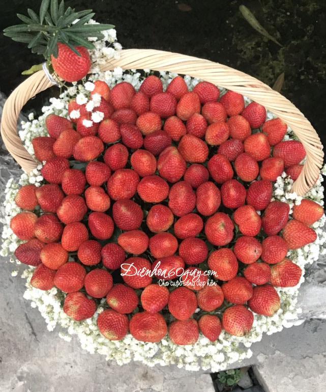 Giỏ hoa dâu tây 26